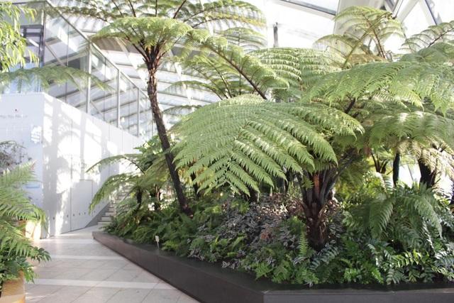 Dự án căn hộ hạng sang tại quận 7 sở hữu 99 khu vườn nhiệt đới trong lòng các tòa tháp - Ảnh 7.