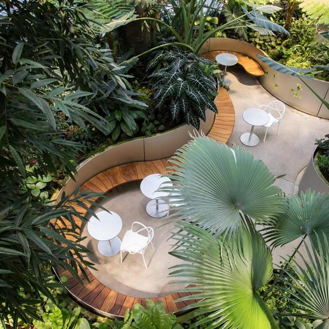 Dự án căn hộ hạng sang tại quận 7 sở hữu 99 khu vườn nhiệt đới trong lòng các tòa tháp - Ảnh 8.
