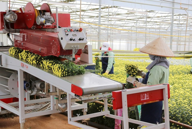 Dalat Hasfarm: Làm nông nghiệp phải phát triển bền vững - Ảnh 2.