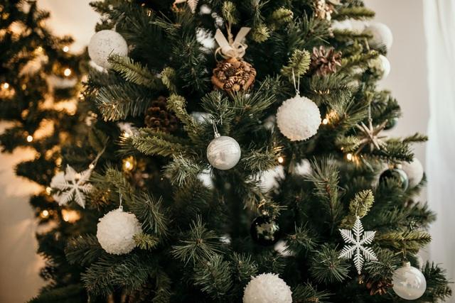 Giáng sinh yên bình tại HOLM - Ảnh 2.