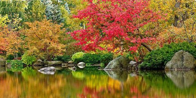 """Dự án 1,2 tỷ USD ở Quận 7 chi nghìn tỷ phát triển hàng chục vườn """"địa đàng bên sông"""" - Ảnh 5."""