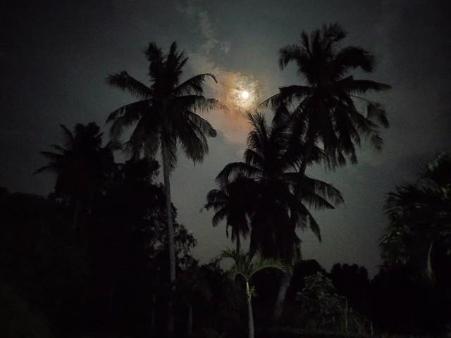 Thử thách chụp ảnh Mặt Trăng bằng điện thoại gây bão cộng đồng mạng - Ảnh 6.