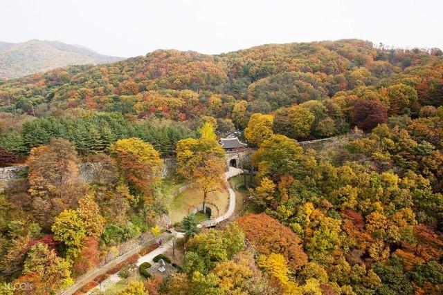 Gyeonggi - Chân trời du học lý tưởng tại Hàn Quốc - Ảnh 1.