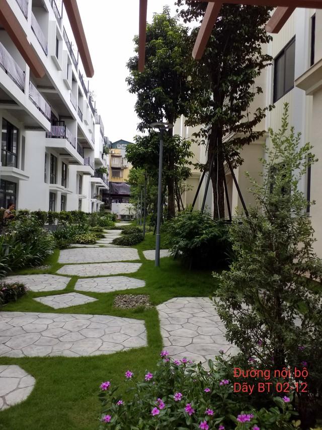 La Casa Villa – Dự án hạng sang giữa lòng phố cho giới nhà giàu - Ảnh 2.