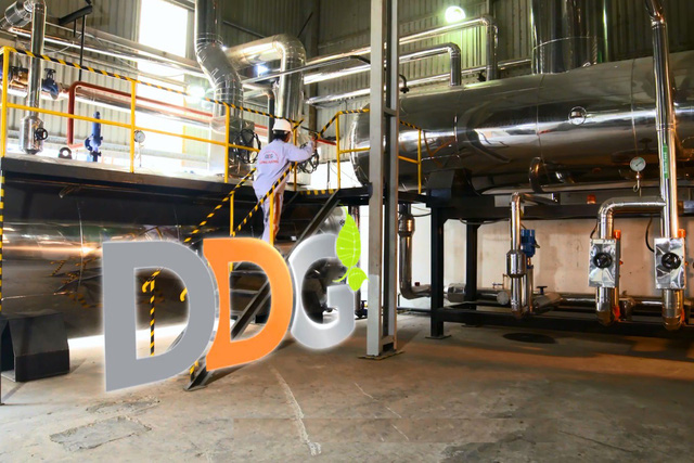DDG vươn lên khẳng định vị thế trong ngành năng lượng - Ảnh 2.