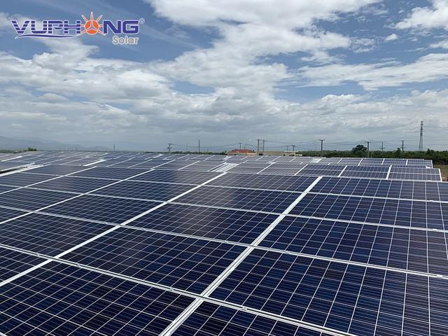 Điện mặt trời kết hợp nông nghiệp công nghệ cao tại Việt Nam: Mô hình sinh lợi kép - Ảnh 1.