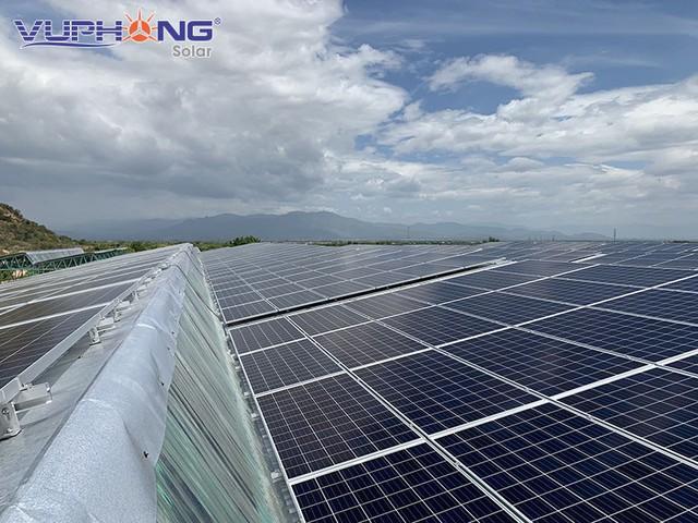 Điện mặt trời kết hợp nông nghiệp công nghệ cao tại Việt Nam: Mô hình sinh lợi kép - Ảnh 2.