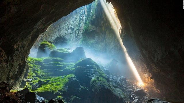 Những vườn quốc gia nổi tiếng Việt Nam bạn nhất định phải ghé thăm một lần - Ảnh 4.