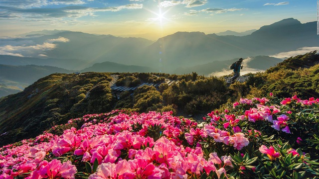 Tiếp tục ưu đãi visa cho công dân Việt, du lịch Đài Loan hưởng lợi - ảnh 2