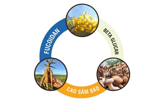 Hợp tác Việt-Nhật trong sản xuất Fucoidan giúp giảm tác hại do hóa trị, xạ trị - Ảnh 2.