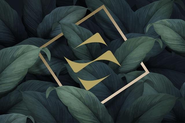 Nâng tầm nhận diện thương hiệu, SonKim Land sẵn sàng cho những bước phát triển nhảy vọt - Ảnh 3.