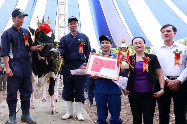 Kết quả chung cuộc của hội thi, ngôi vị Hoa hậu Bò sữa Mộc Châu năm 2017 đã thuộc về cô bò mang số hiệu 5717 của chủ hộ Đặng Văn Thắm – đơn vị chăn nuôi Vườn Đào 1. Tân hoa hậu sinh năm 2012, có nguồn gốc bố Mỹ, mẹ là Hà Lan – Cuba với trọng lượng cơ thể 735kg và 13.268kg/305 ngày.