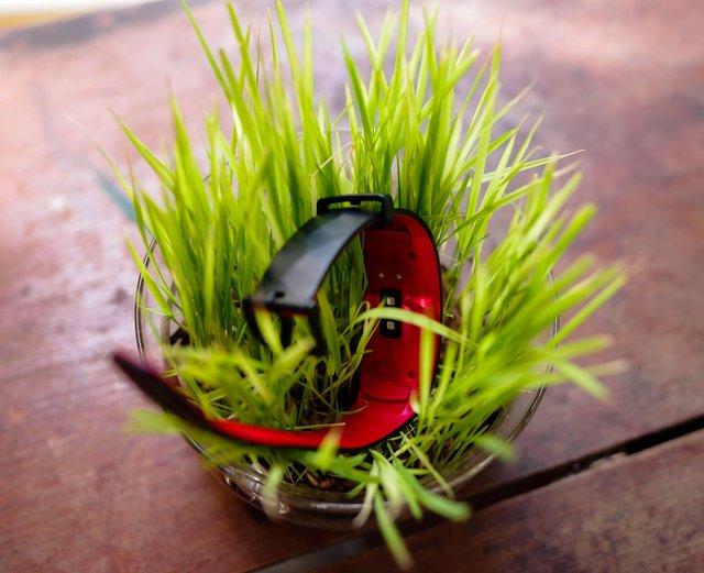 Vòng đeo thông minh Samsung Gear Fit2 Pro: Mạnh mẽ, bền bỉ và thời trang - Ảnh 4.