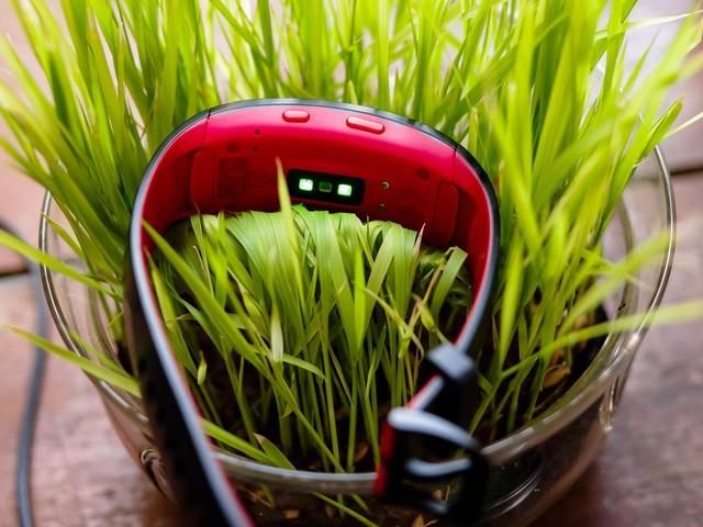 Vòng đeo thông minh Samsung Gear Fit2 Pro: Mạnh mẽ, bền bỉ và thời trang - Ảnh 7.
