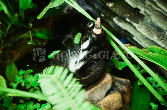 Trầm hương Hoàng Giang - nhang trầm nụ đốt đỉnh
