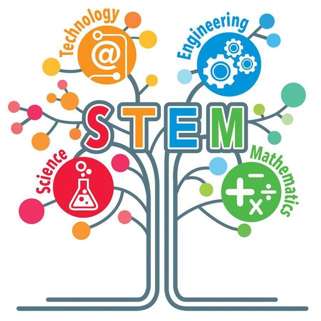 """STEM - Phương pháp học mới giúp con bạn trở thành """"thiên tài"""" - Ảnh 1."""