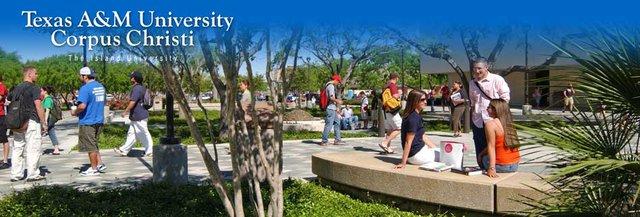 Sẵn sàng chinh phục học bổng 12 trường Đại học công lập Mỹ & Canada - Ảnh 2.