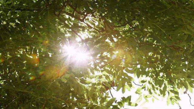"""Cùng """"soi"""" 50 sắc thái đáng yêu của Tronie Ngô và Trọng Hiếu trong MV mới - Ảnh 1."""