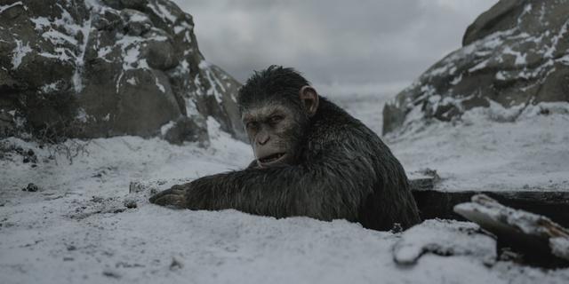 """""""Đại chiến hành tinh khỉ"""" – Cái kết mãn nhãn và xúc động cho loạt phim bom tấn """"The Apes"""" - Ảnh 6."""