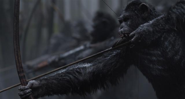 Lời từ biệt tàn khốc và đầy nước mắt của loạt phim hành tinh khỉ - Ảnh 3.