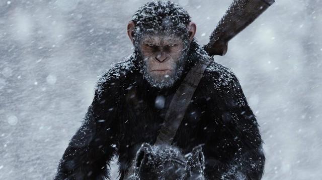 Lời từ biệt tàn khốc và đầy nước mắt của loạt phim hành tinh khỉ - Ảnh 4.