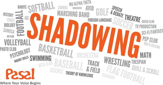 Chuẩn âm điệu tự nhiên với Shadowing trong phương pháp Effortless English - Ảnh 1.