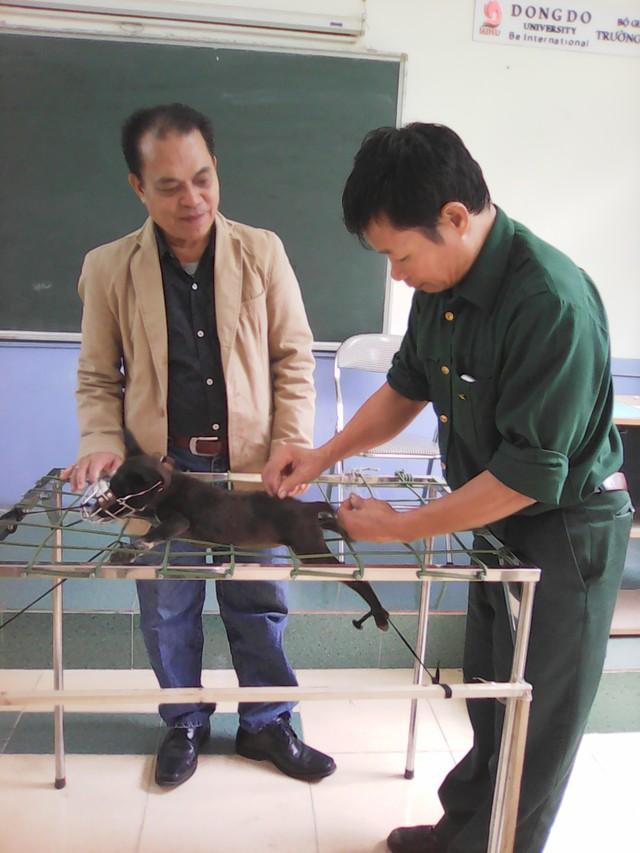 Thông tin về học bổng khoa thú ý trường đại học Đông Đô