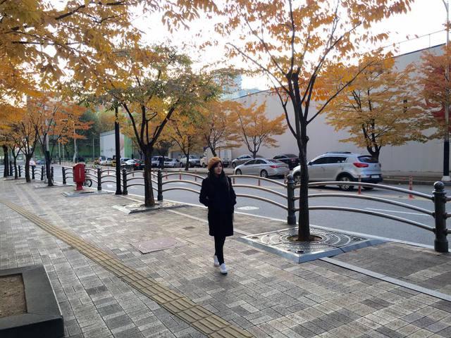 Hàn Quốc – Thiên đường xanh mướt hạ về, đỏ lá thu sang - Ảnh 4.