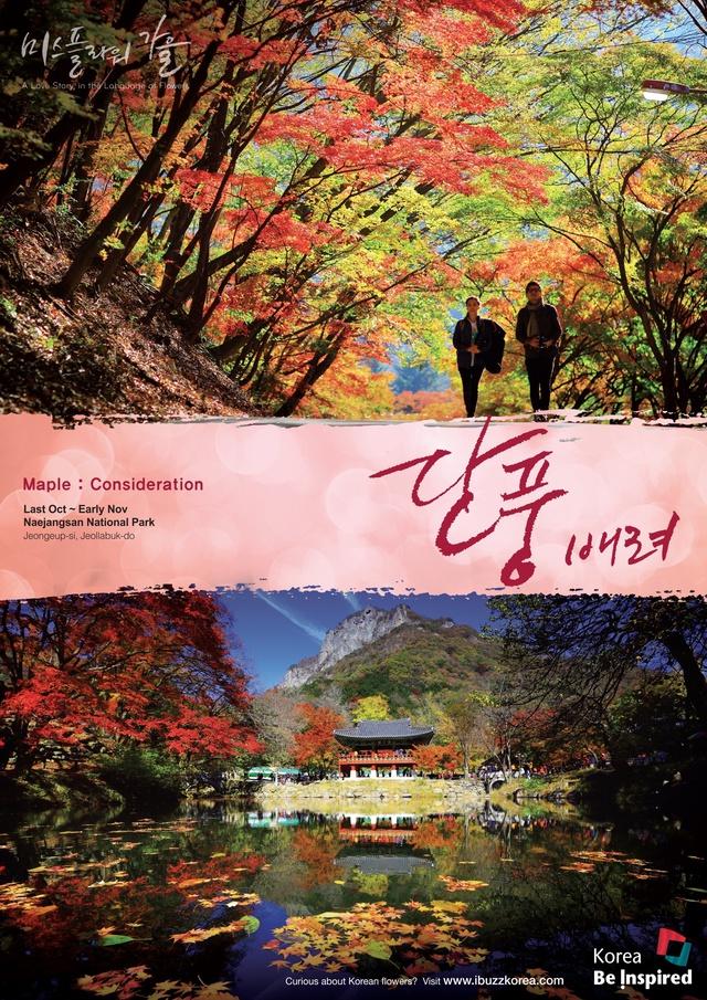 Hàn Quốc – Thiên đường xanh mướt hạ về, đỏ lá thu sang - Ảnh 7.