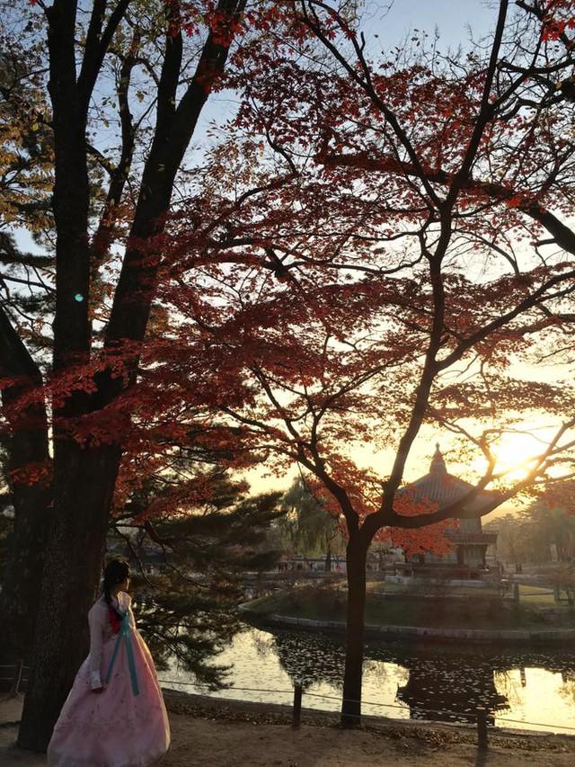 Hàn Quốc – Thiên đường xanh mướt hạ về, đỏ lá thu sang - Ảnh 15.