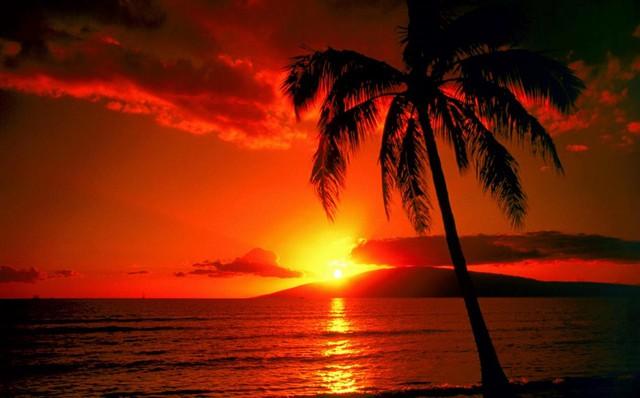 Ngắm hoàng hôn trên đại dương bao la là trải nghiệm khó quên của du khách khi đến bãi biển Ông Lang. Nguồn ảnh: Internet.