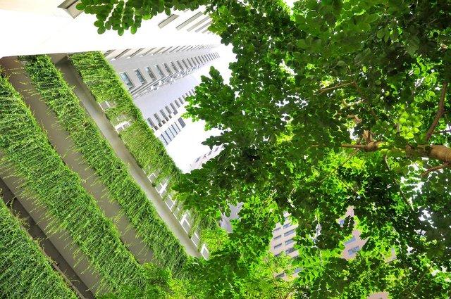 Không gian xanh bất tận tại dự án Mullbery Lane.