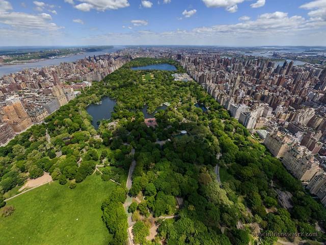 Công viên Central Park tại New York. Ảnh: Pinterest.