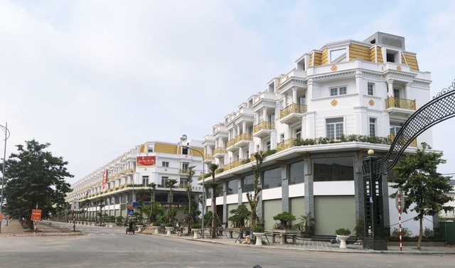 Hơn 300 khách hàng tham dự Lễ khánh thành Shophouse Lê Trọng Tấn - Ảnh 5.