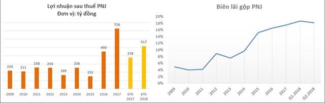 Bất chấp nhịp điều chỉnh mạnh của cổ phiếu, PNJ vẫn là một trong những doanh nghiệp niêm yết tốt nhất sàn chứng khoán Việt Nam - Ảnh 2.