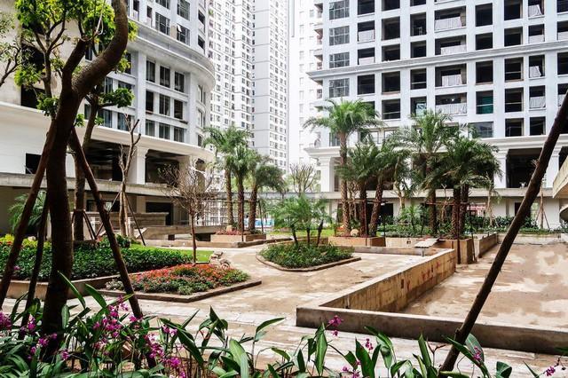 Khu căn hộ chung cư xanh Sunshine Garden tiếp tục mở phân phối có nhiều chính sách phân phối hàng quyến rũ - Ảnh 1.