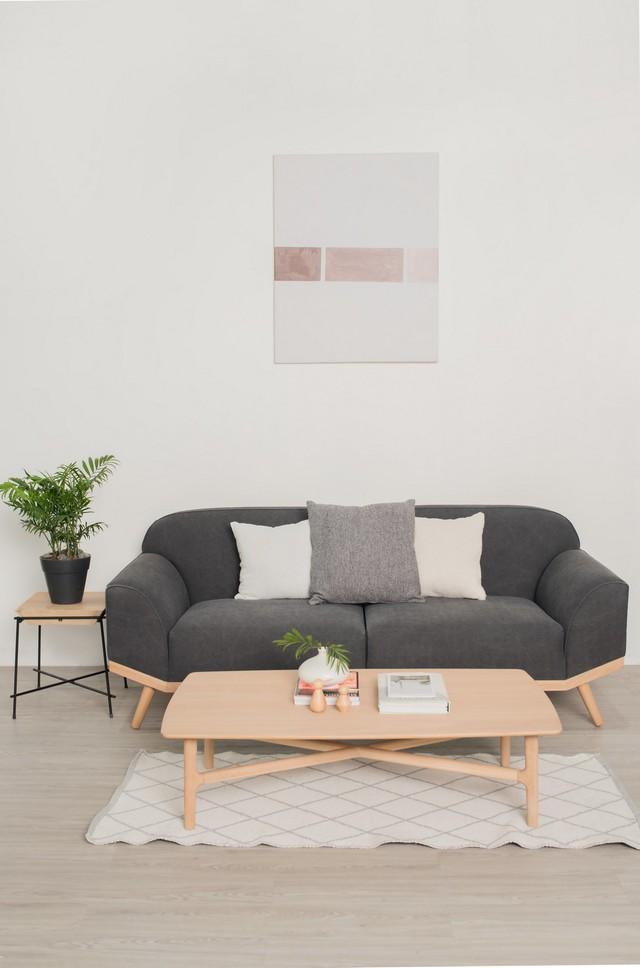 Những mẫu sofa đẹp cho ngày đông thêm ấm áp - Ảnh 4.