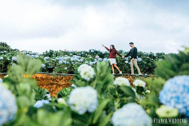 Ngất ngây với những địa điểm chụp ảnh cưới đẹp ở Đà Lạt năm 2018 - Ảnh 4.