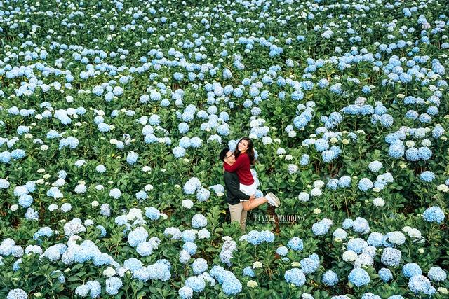 Ngất ngây với những địa điểm chụp ảnh cưới đẹp ở Đà Lạt năm 2018 - Ảnh 5.
