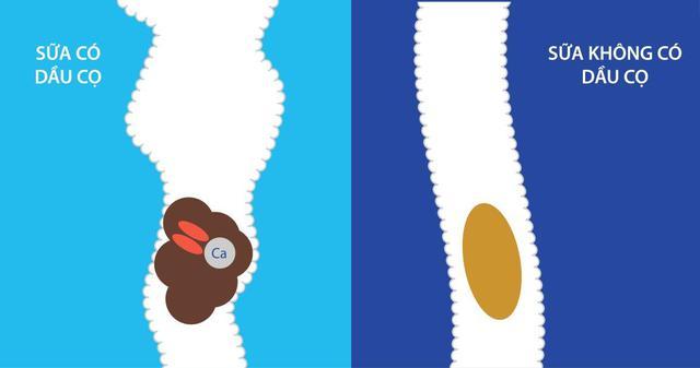 Trẻ hay bị táo bón, mẹ cần xem lại ngay chế độ ăn uống của trẻ - Ảnh 2.