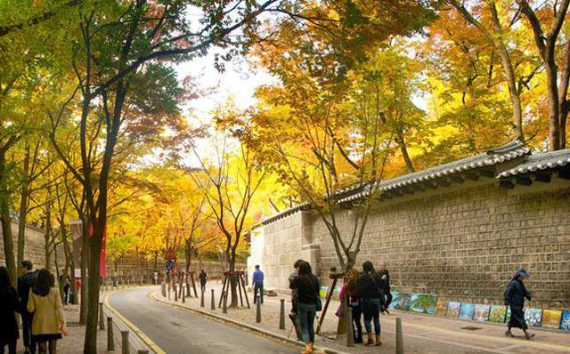Đến ngay Seoul đi, ngắm con đường lá đỏ lãng mạn như trong phim Hàn - Ảnh 3.
