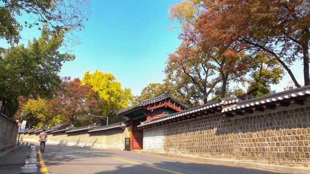 Đến ngay Seoul đi, ngắm con đường lá đỏ lãng mạn như trong phim Hàn - Ảnh 6.