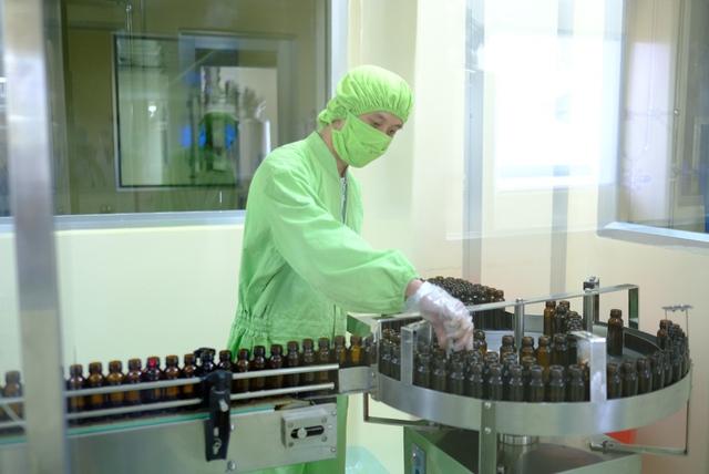 """Atiso chuẩn GACP: Dược liệu """"vàng"""" giúp giải độc gan - Ảnh 2."""
