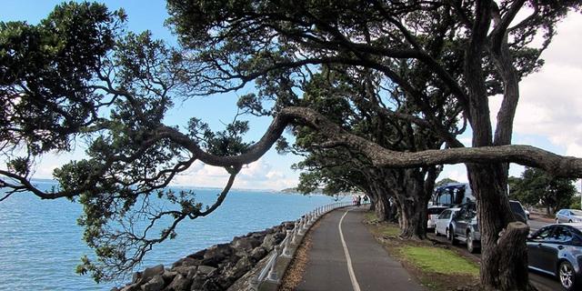 Ngất ngây với những cảnh sắc tại thiên đường trên mặt đất – New Zealand - Ảnh 2.