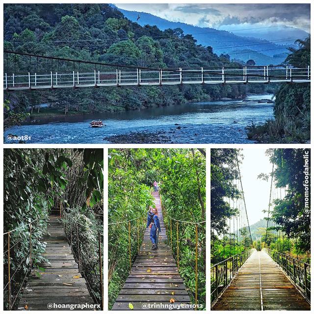 Thành phố du lịch rừng Madagui 1