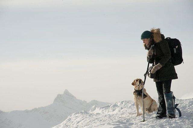 """The Mountain Between US: """"Vị ngọt"""" khi cùng nhau tìm đến hạnh phúc - Ảnh 3."""