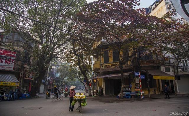 Hà Nội, Sài Gòn: Có những ngày cuối năm bình dị như thế! - Ảnh 1.