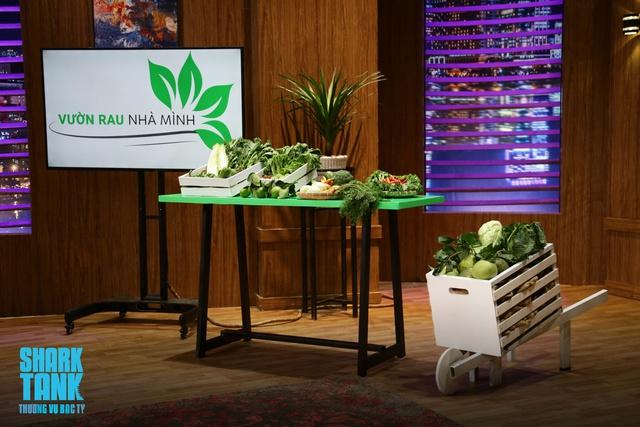 Shark Tank tập 11: Hai startup trồng rau sạch được rót 2,5 tỷ đồng - Ảnh 2.