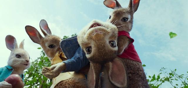Chú Thỏ Peter tinh nghịch sẽ xuất hiện trên màn ảnh rộng đầu năm mới - Ảnh 3.