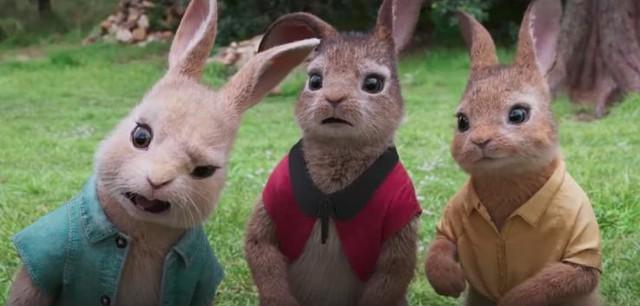 Chú Thỏ Peter tinh nghịch sẽ xuất hiện trên màn ảnh rộng đầu năm mới - Ảnh 6.